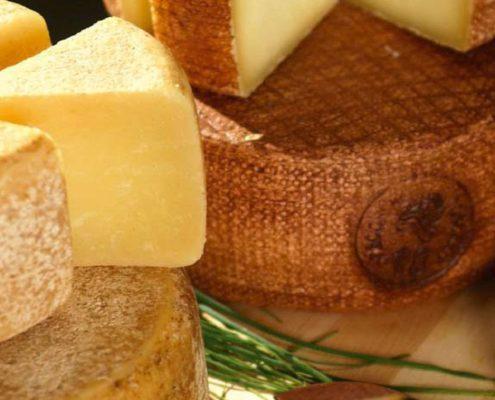 formaggi di qualità come il pecorino toscano dop
